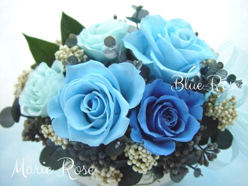 プリザーブドフラワー 青いバラのアレンじメント